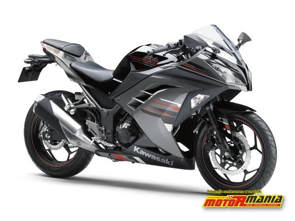 2013 Ninja 250R Ebony - Metallic Moondust Gray