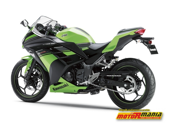 Kawasaki Ninja 250R Lime Green-Ebony 2013