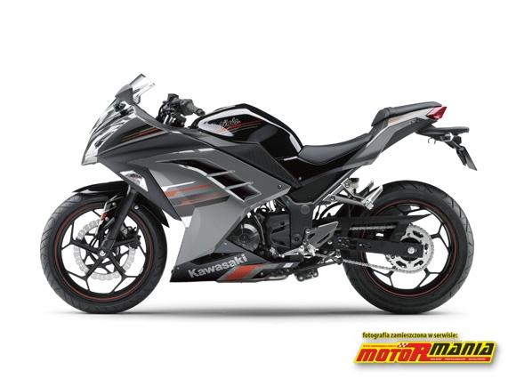 Ninja 250R Ebony - Metallic Moondust Gray
