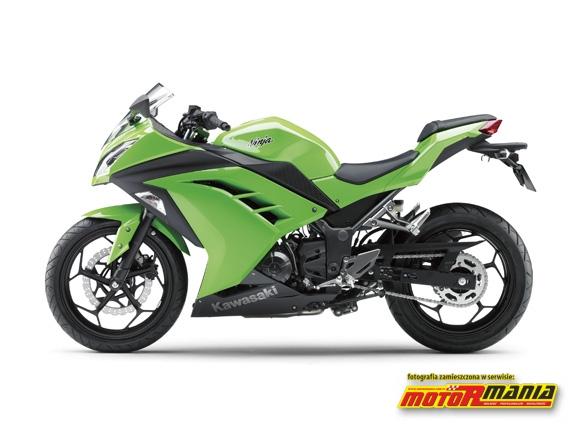 Ninja 250R lewy profil