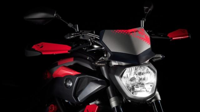 Yamaha MT07 Moto Cage 2015 ze Stunterem 13 (12)