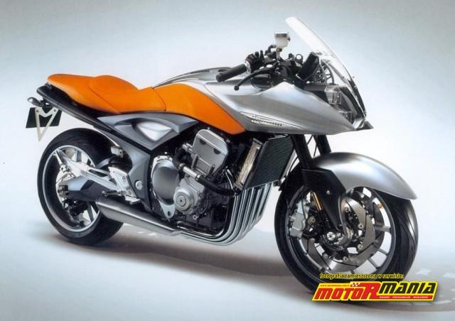 Suzuki Stratoshere1100