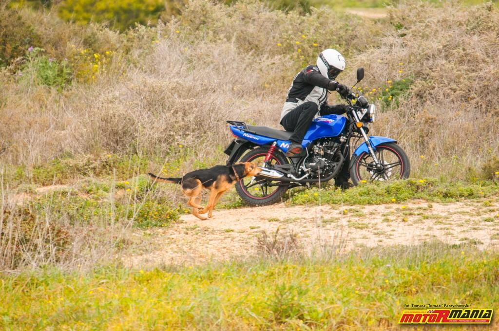 Barton N125 - fot Tomazi MotoRmania (1)