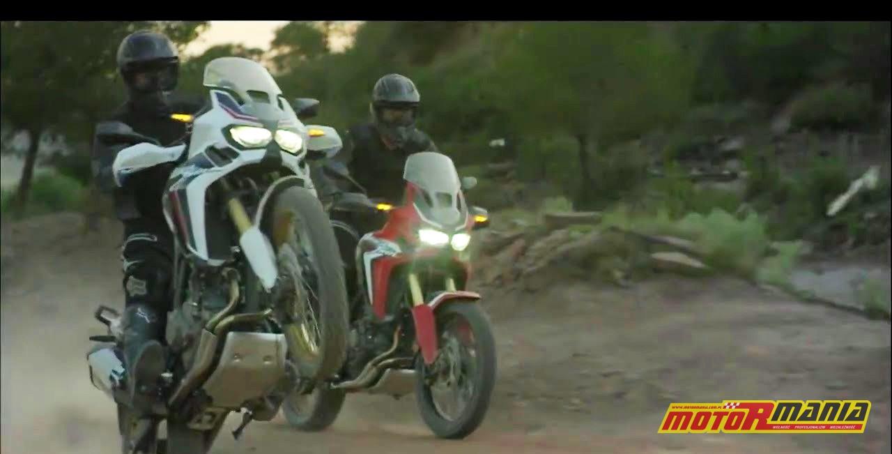 Africa Twin 2015 wheelie