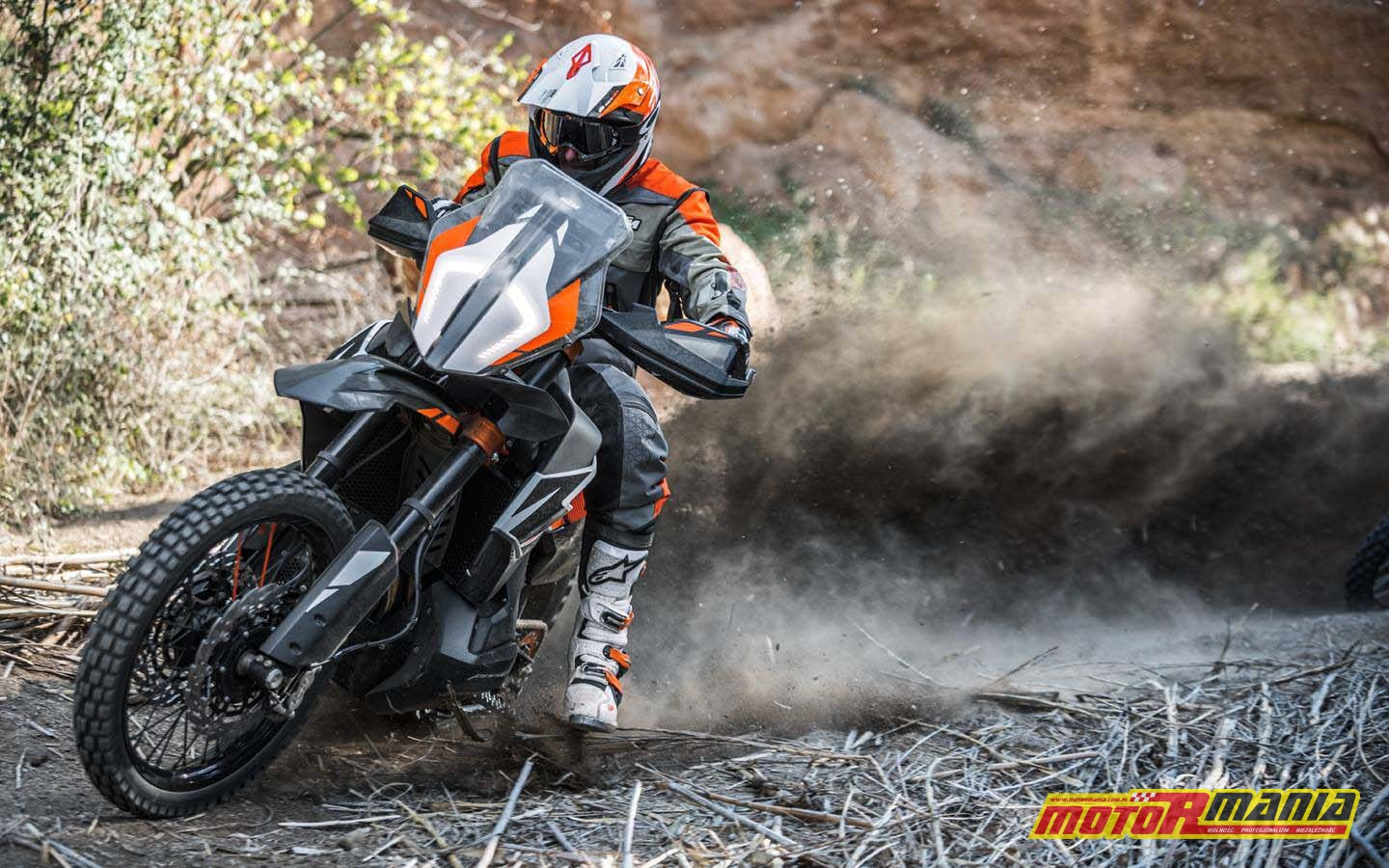 KTM 790 Adventure R Prototype (6)