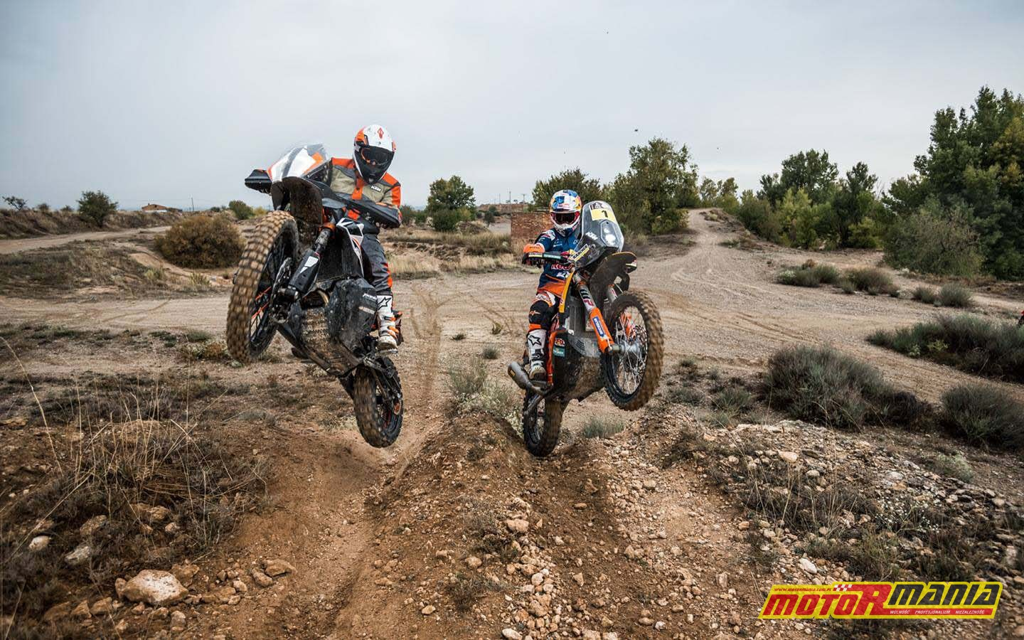 KTM 790 Adventure R Prototype (9)