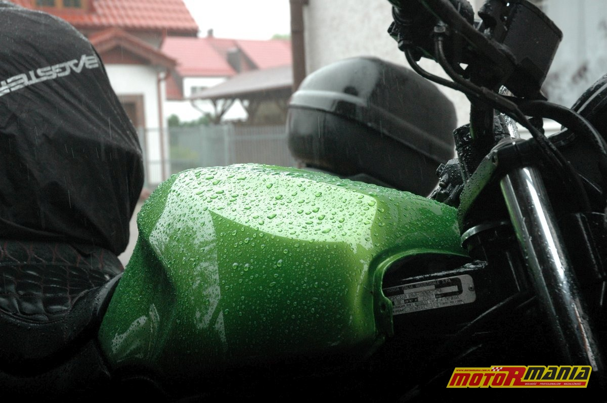 04-Chojna-deszcz-fot-Shayba