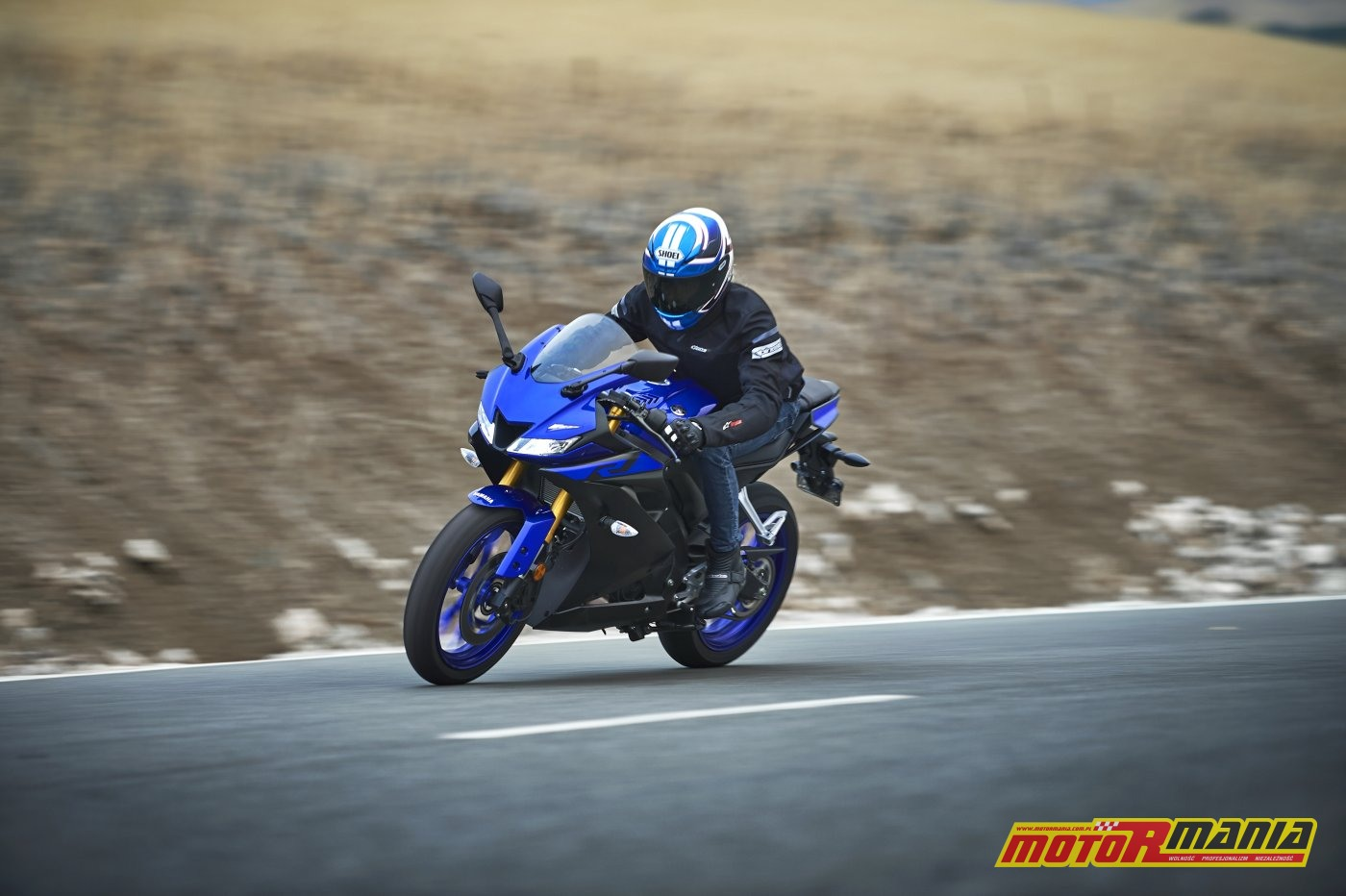 Yamaha YZF-R125 2019 (10)