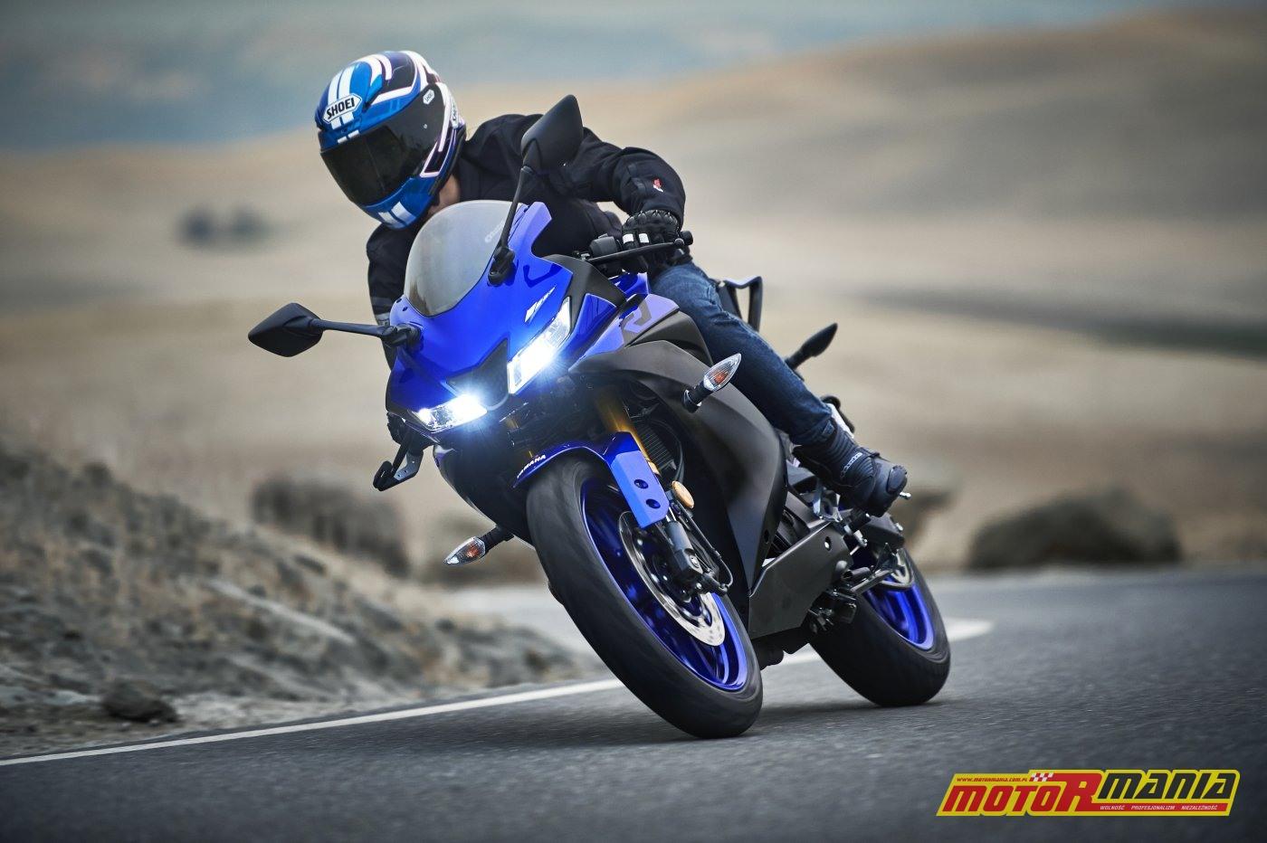 Yamaha YZF-R125 2019 (11)