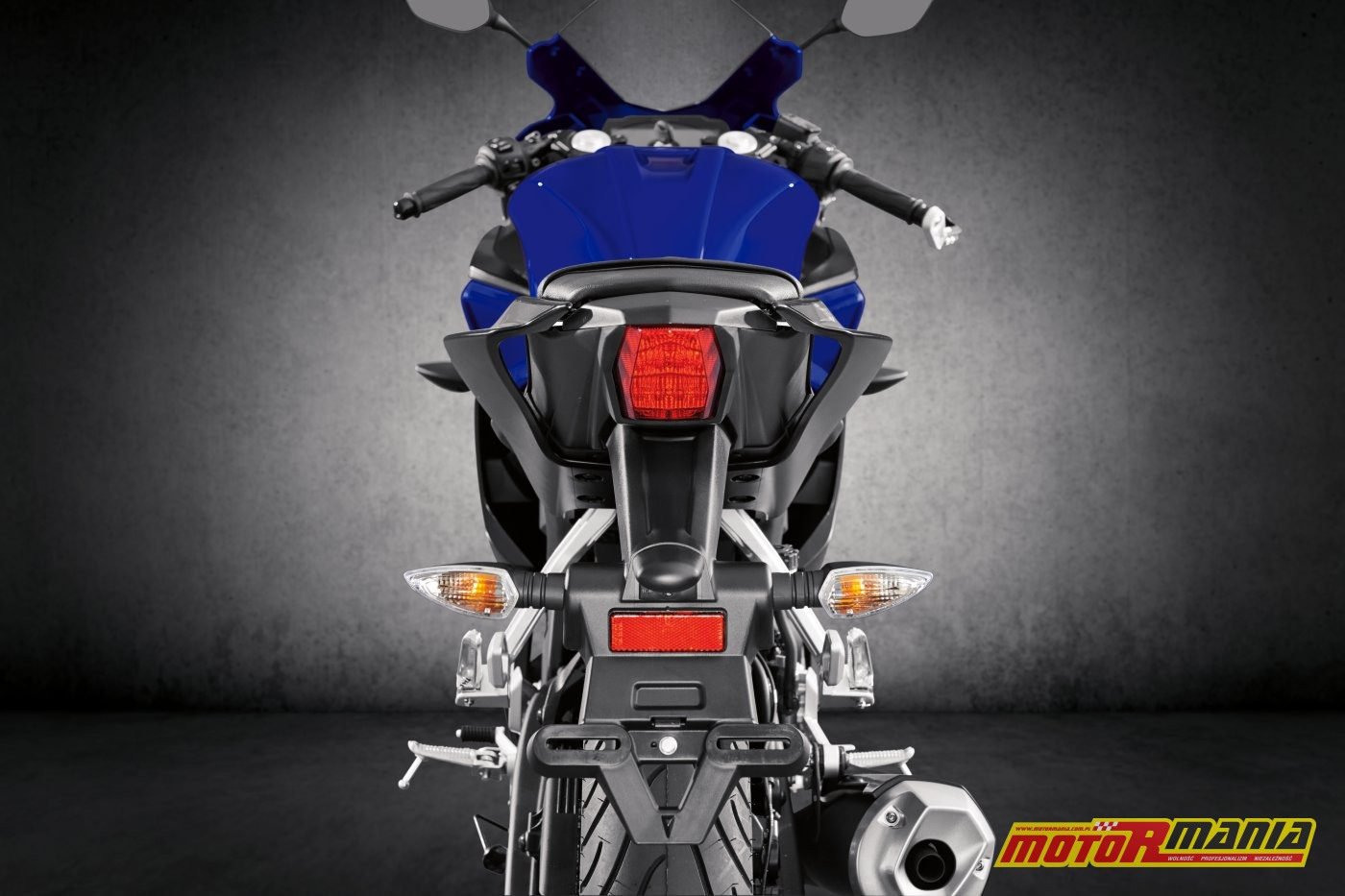 Yamaha YZF-R125 2019 (13)
