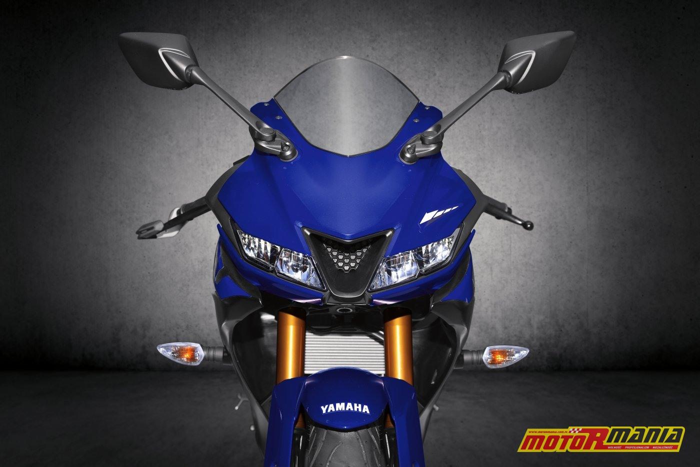 Yamaha YZF-R125 2019 (15)