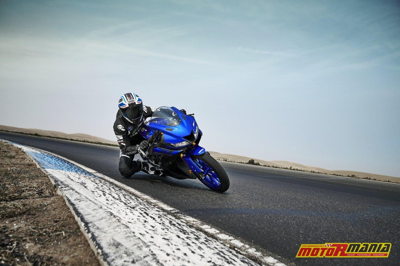 Yamaha YZF-R125 2019 (5)