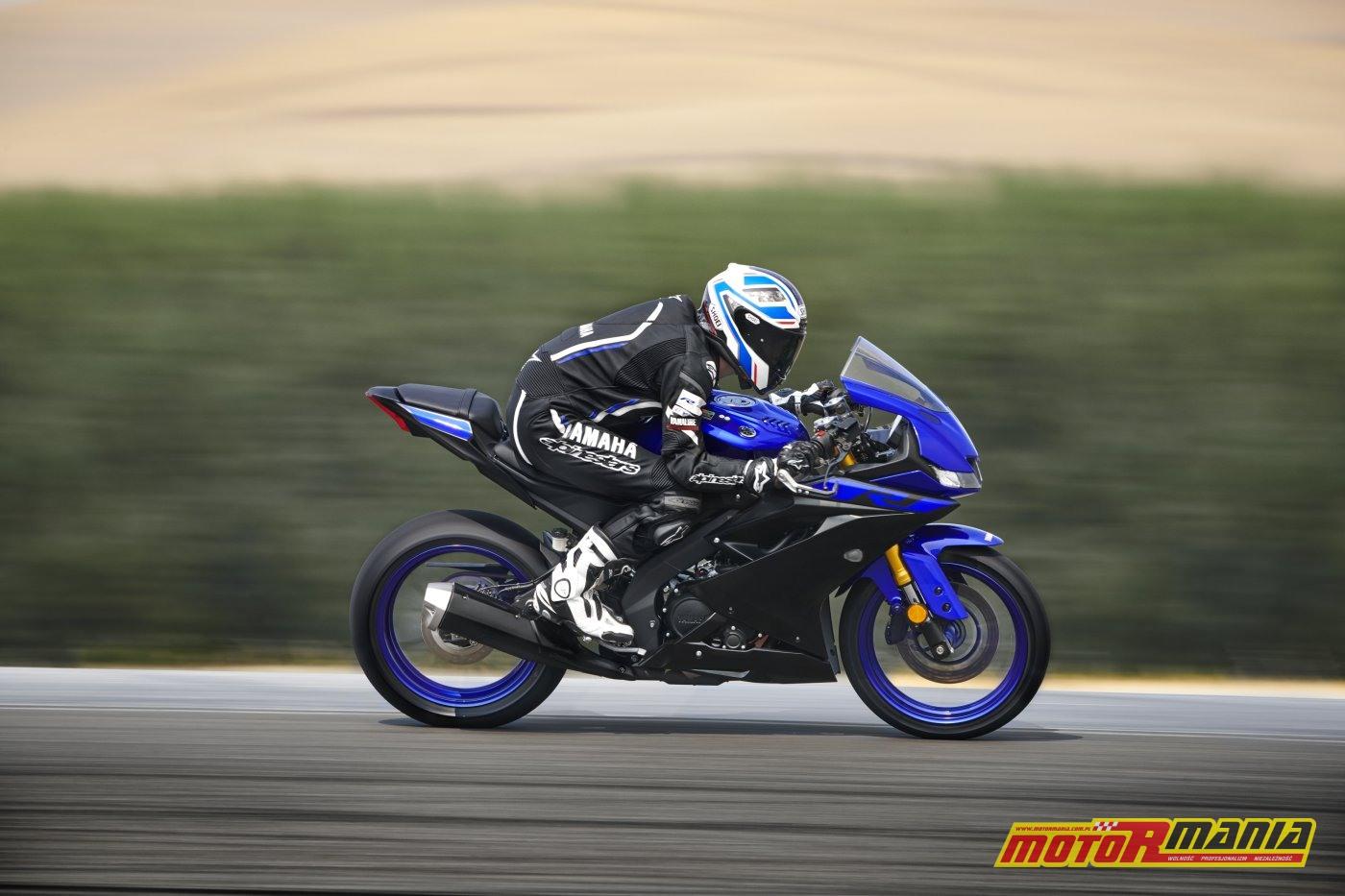Yamaha YZF-R125 2019 (7)