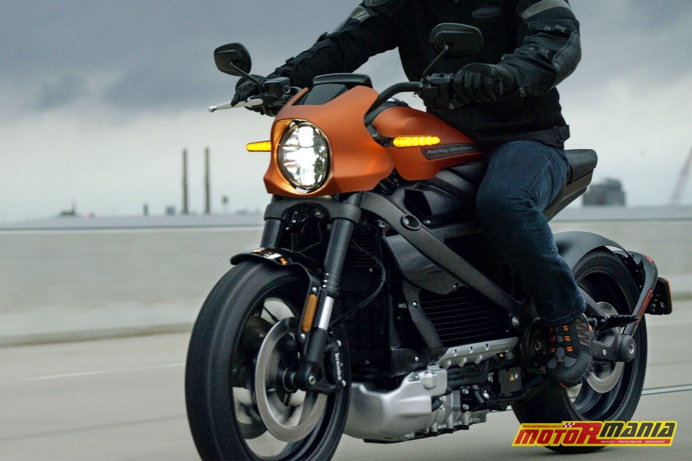 Harley Davidson LiveWire 2020 (12)