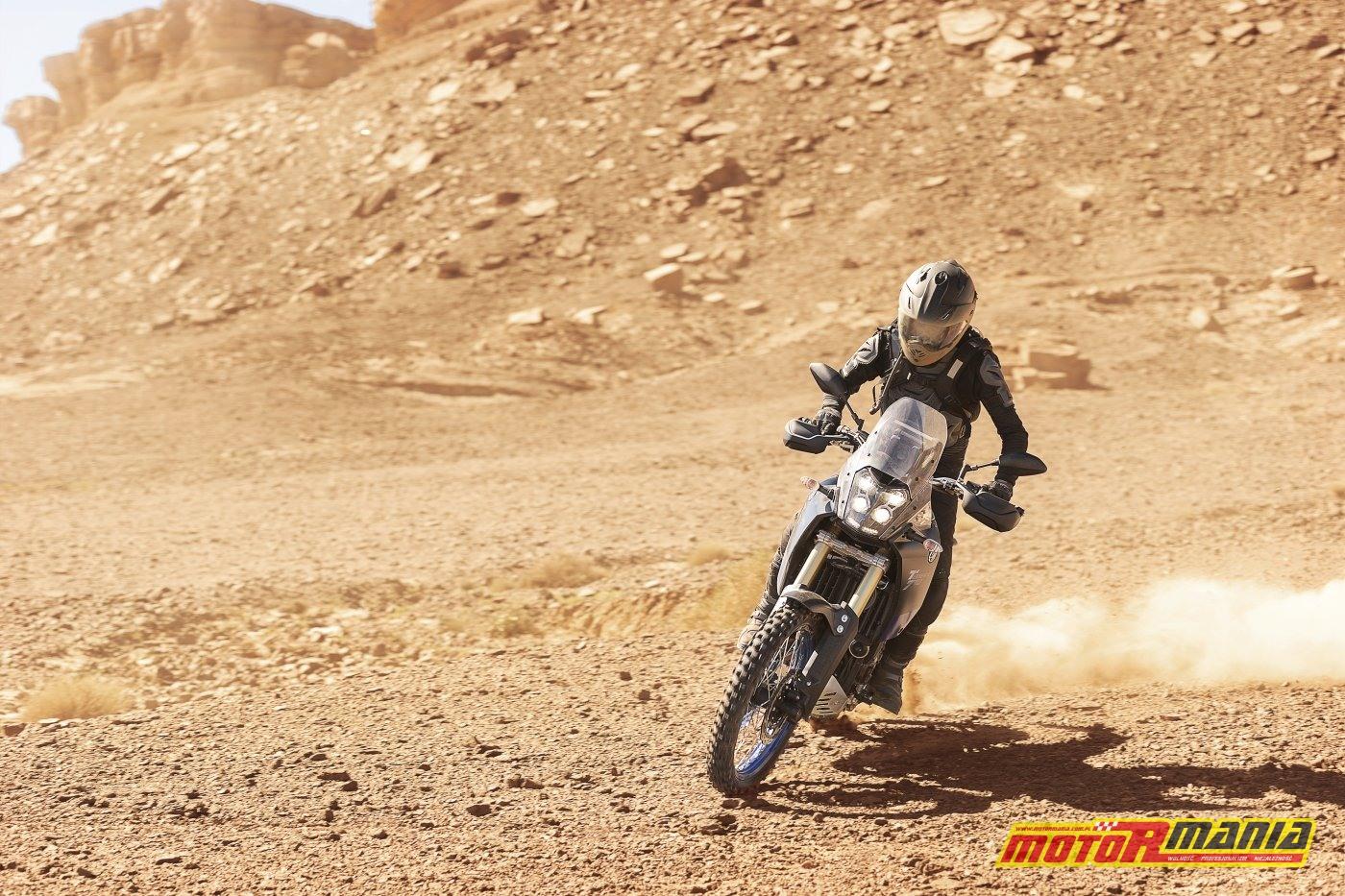 Yamaha Tenere 700 2019 (5)