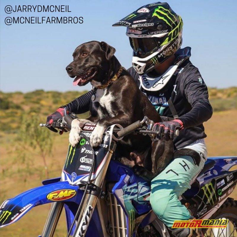 Jarryd McNeil FMX z psem  (3)
